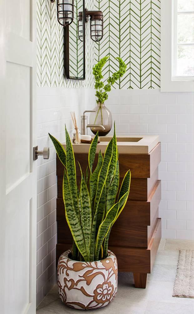 banheiros-com-plantas-02